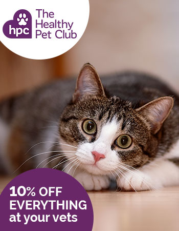 The Healthy Pet Club