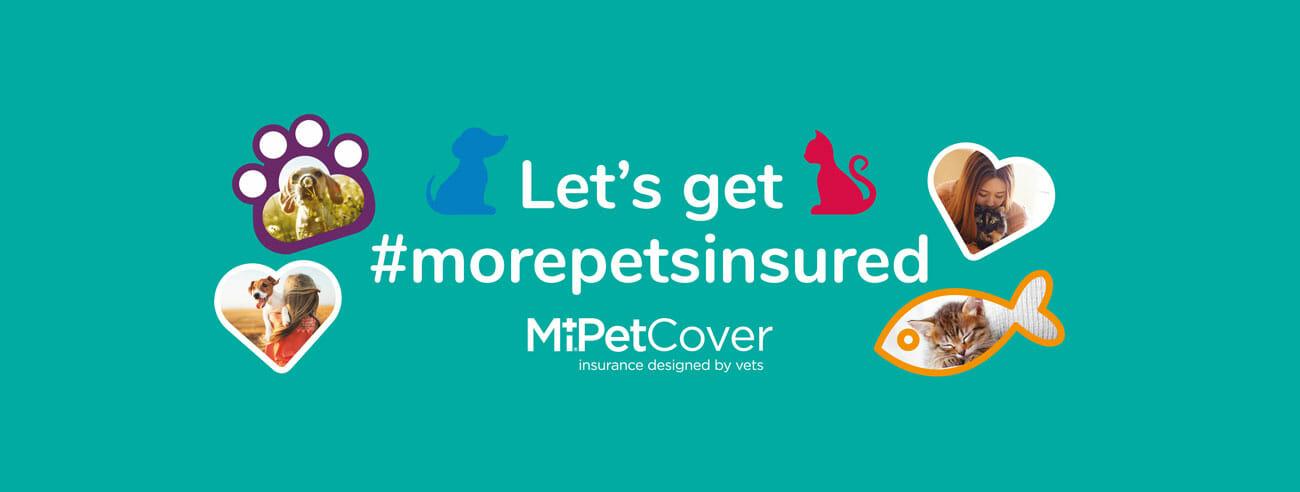 MiPet Cover - Let's get #morepetsinsured